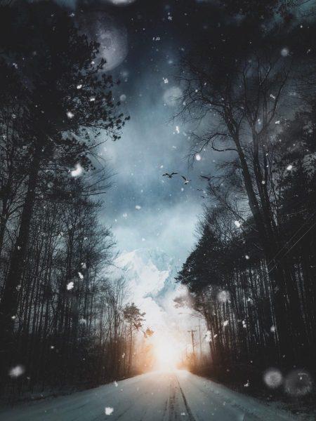 Snowing Stars